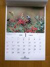 Calendar200801