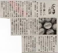 Asahi_shibun_080608