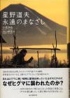 Hoshino_eien_no_manazashi