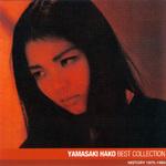 Hako_best2008_1