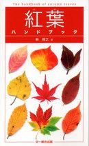 Koyo_handbook