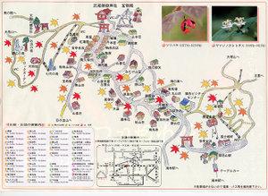 Mitake_momiji_map_3