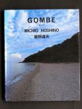 Hoshino_gombe_photo_2