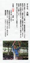 Sumomo_taiyo