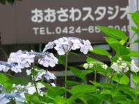 201106190070