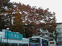 200511090015