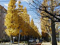 200512030003_2