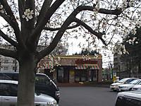 201204010013