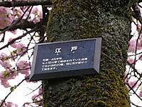 201204210029