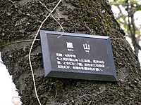 201204210064