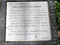 201204290002