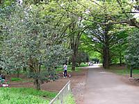 201204300060