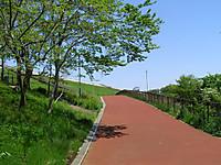 201205050019
