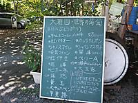201210020011