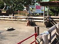 201210250015