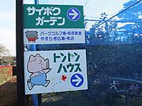 201210250016