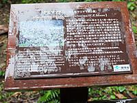 201211170245