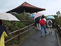 201211170260