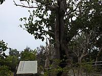 201211180358