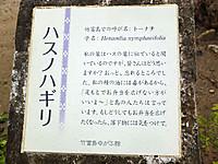 201211180359_2