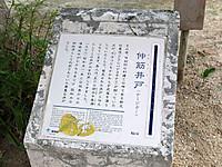 201211180390