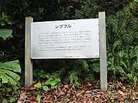 201211180394