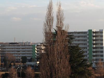 201302040001