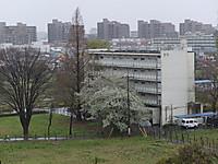 201304030186