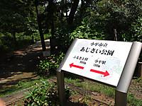 201306030007