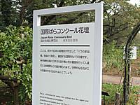 201310190043