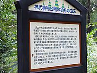 201310190161