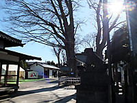 201401060020