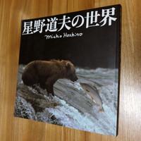 Hoshin_michio_zuroku_3