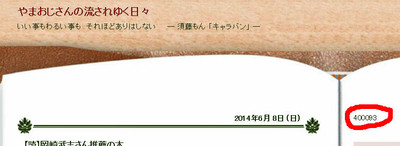 20140609_blog_counter_2