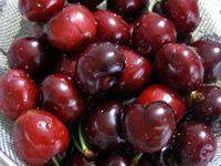 American_cherry