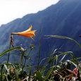 1989.7 谷川岳 (1)