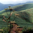 1989.7 谷川岳 (2)
