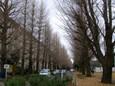 2009年12月13日 (2)